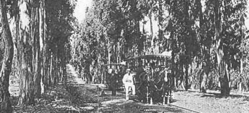 Tranvía a caballos en el Parque Giot de Villa Colón ( © Archivo Marcelo Benoit )